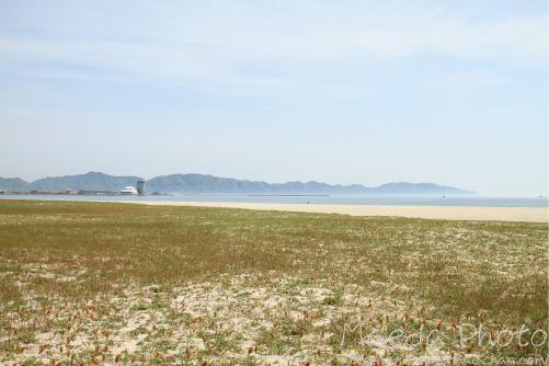 日本海2012画像
