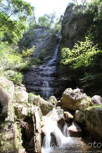 滝山公園2012画像12