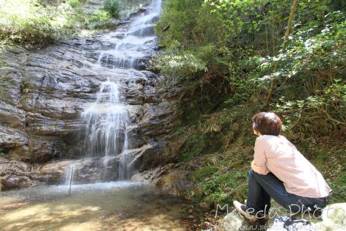 滝山公園2012画像13