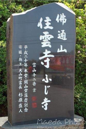 住雲寺の藤2012画像1
