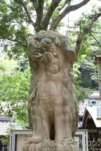 美保神社2012画像14