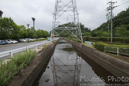 米子の米川2012画像2