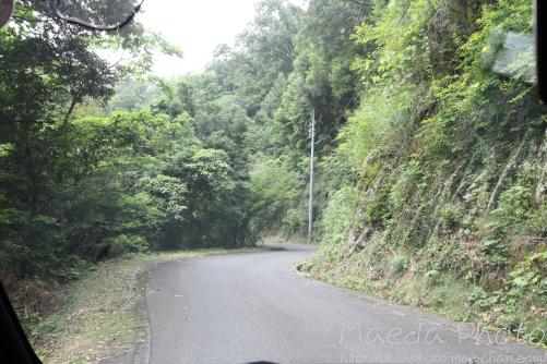 母塚山の観音さん2012画像7