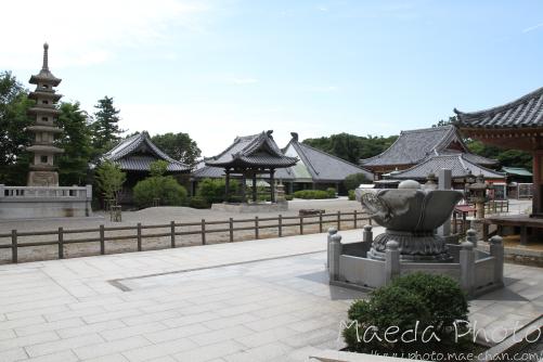 屋島寺2012画像2