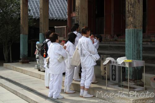 屋島寺2012画像5