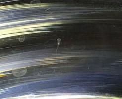 メダカの卵が孵化画像
