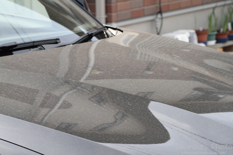 BMW 116i M Sport納車2週間画像4