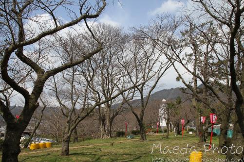 境港台場公園2012画像