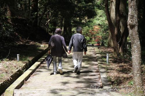 滝山公園2012画像5