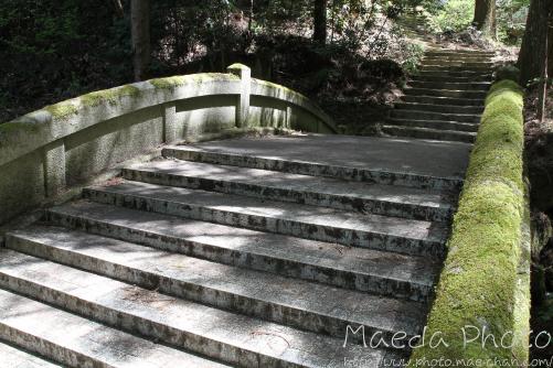 滝山公園2012画像7
