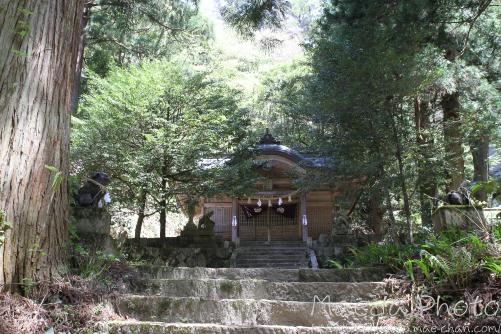 滝山公園2012画像8