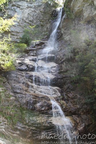滝山公園2012画像11