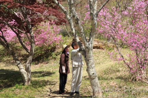 滝山公園2012画像17