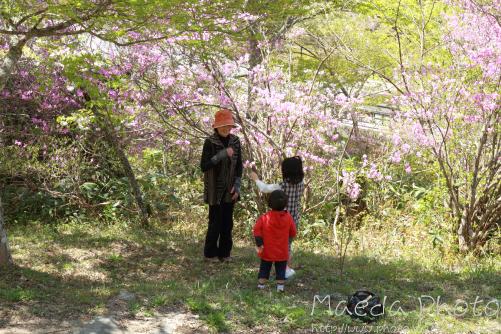 滝山公園2012画像21