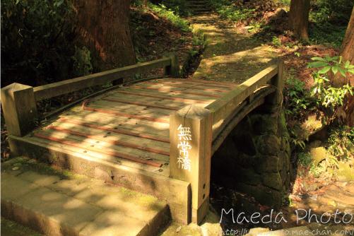 安来清水寺2012画像3