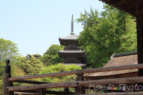 安来清水寺2012画像12