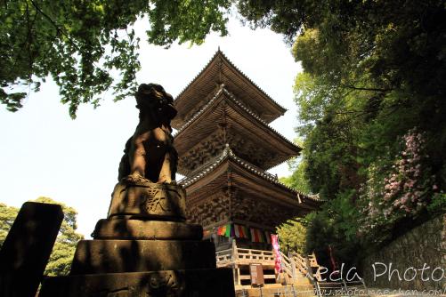 安来清水寺2012画像15