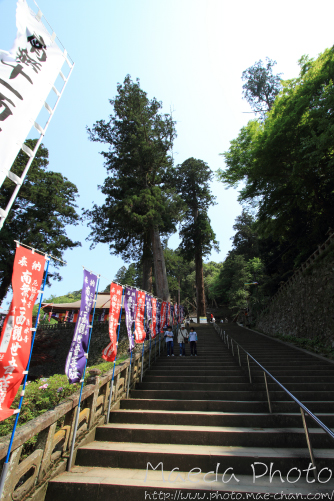 安来清水寺2012画像17