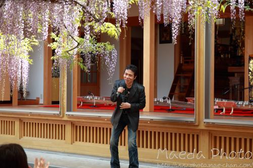 住雲寺の藤2012画像5