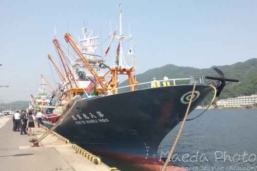 境水道で船団出港2012画像3
