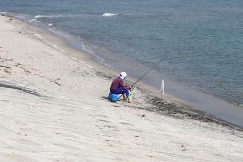 魚釣りは好きですか画像