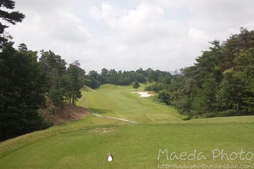 やっぱりゴルフは面白い2012画像