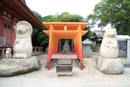 屋島寺2012画像3