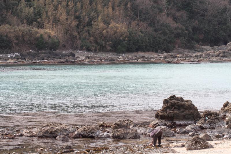天然海水を汲みに島根半島へ画像2