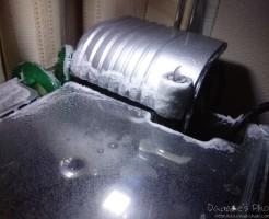 ミドリフグ水槽の塩ダレ画像1