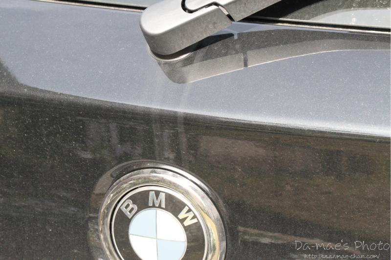 BMW 116i M Sport納車2週間画像5