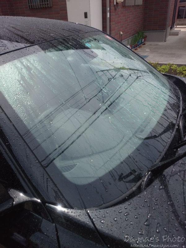 KeePerカーシャンプーで洗車画像5